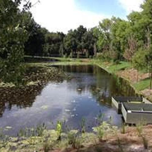 Ave V Storm Water Rehabilitation